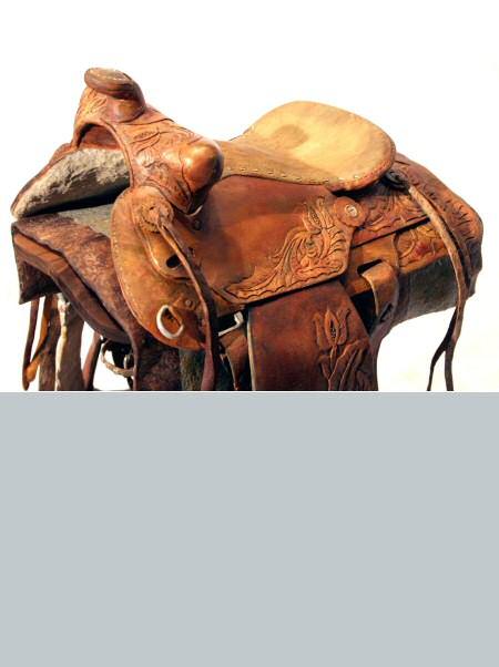saddle_up2