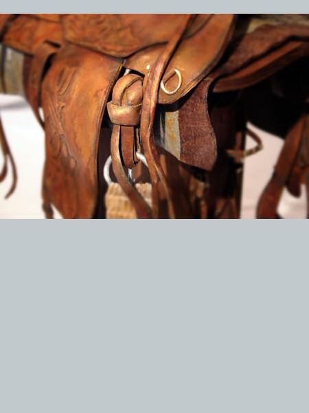 saddle_up3